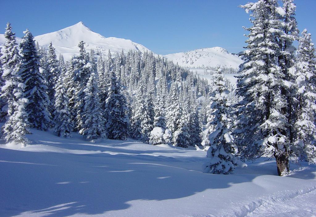 Winterlandschaft_med